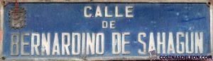 Calle Bernardino de Sahagun placa